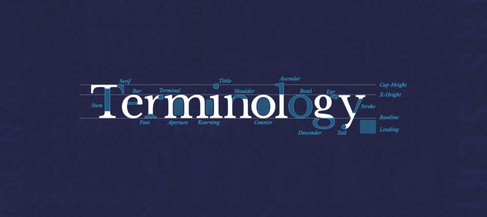 type-terms-terminology