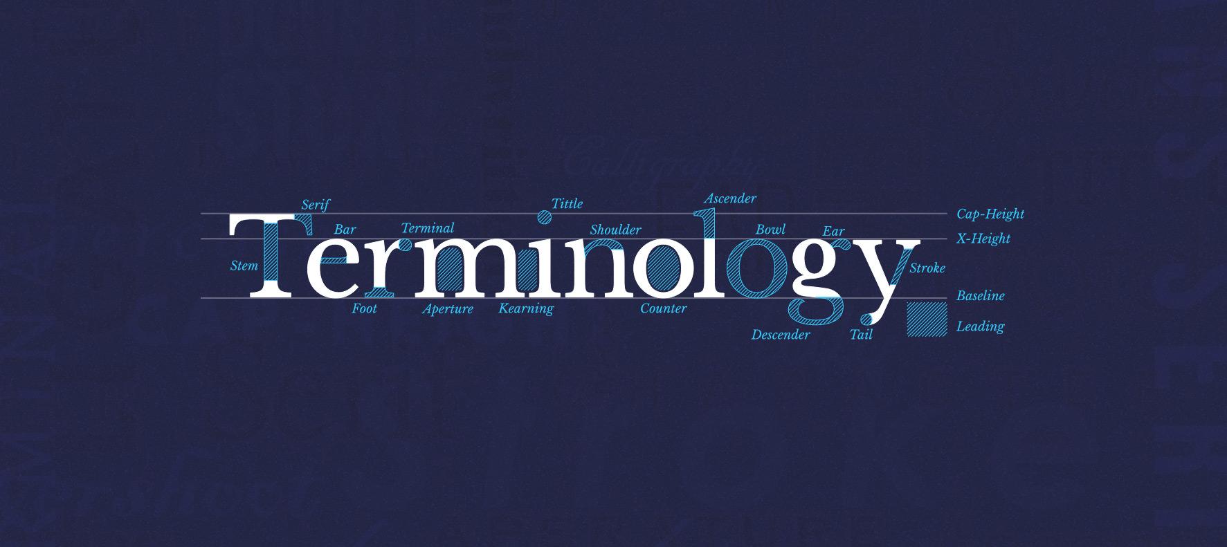 Type Terminology